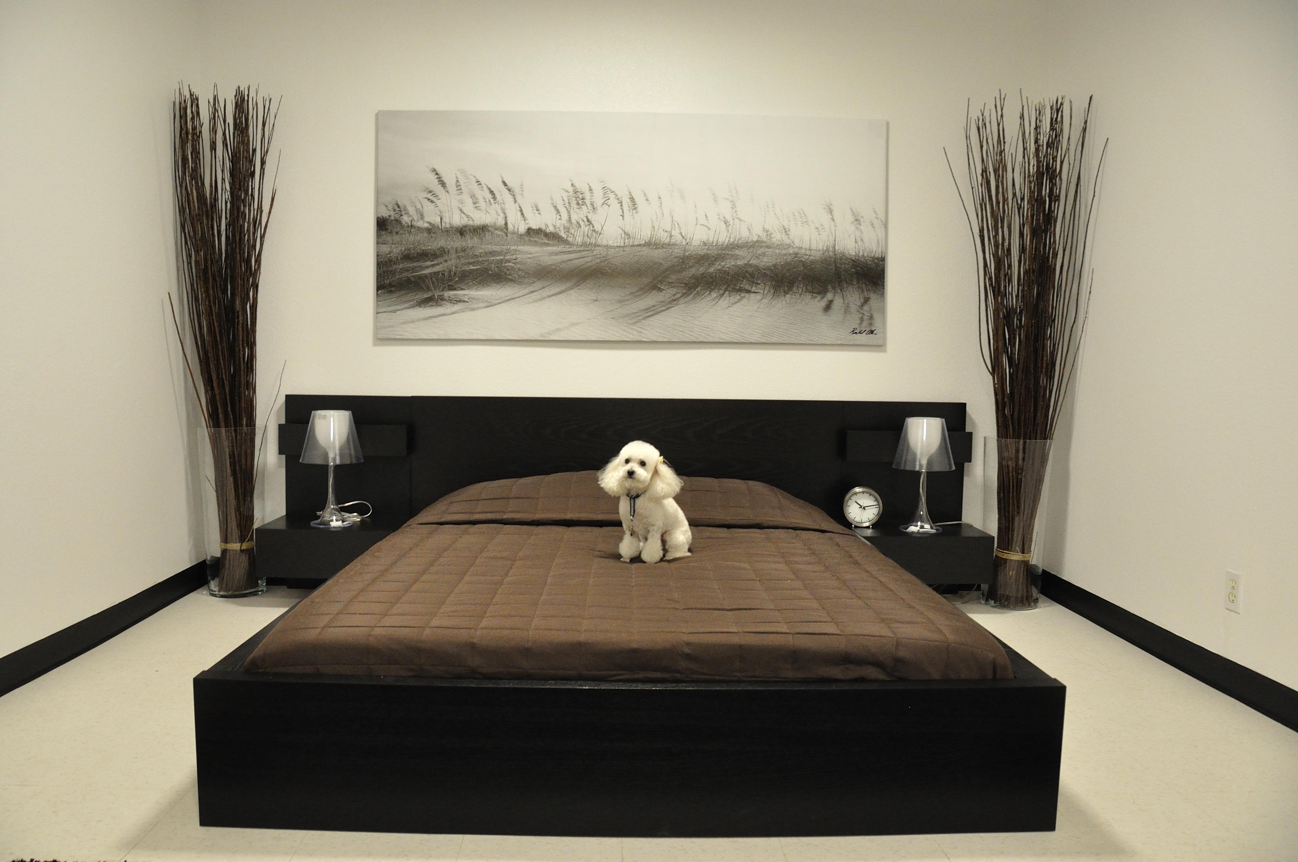 niche pour chien caravane. Black Bedroom Furniture Sets. Home Design Ideas