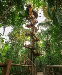 Treehouse Pr 2